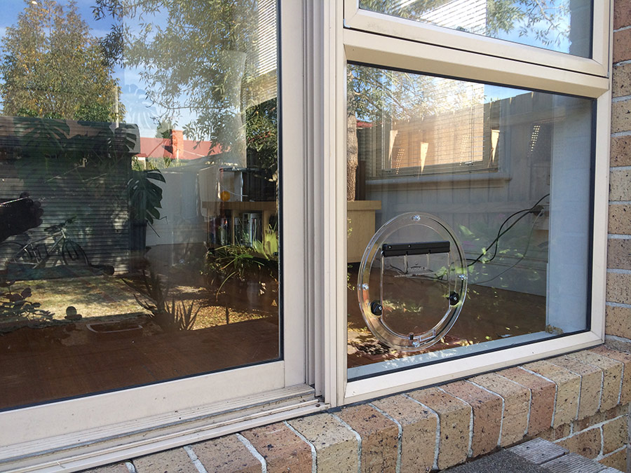 Cat Flaps Cat Doors Installed Melbourne Affinity Glazing